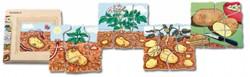 Beleduc  houten lagenpuzzel Aardappel