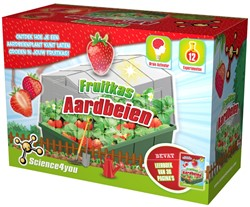 Science4you - Fruitkas - Aardbeien