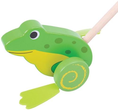 Bigjigs Frog Push Along (4)