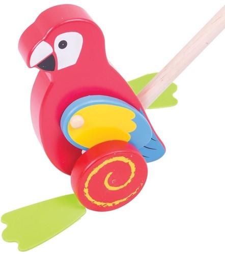 Bigjigs Parrot Push Along (4)