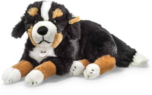 Steiff Senni Bernese mountain dog, black/brown/white