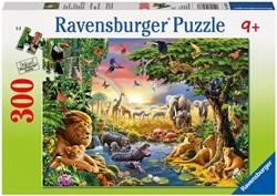 Puzzels 250 tot 1000 stukjes