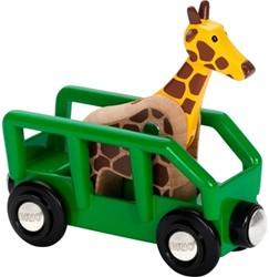 Brio Thema safari