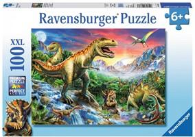Puzzels 100 stukjes